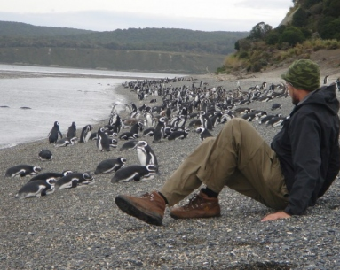 Caminata Pingüinera