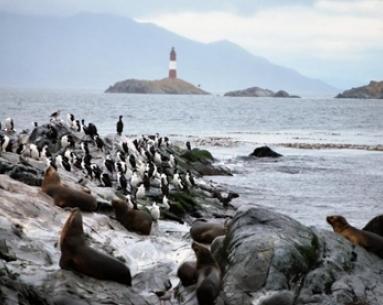 Isla de Lobos y  Faro con trekking