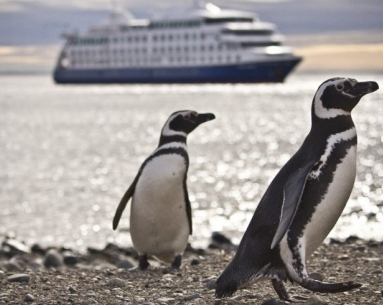 Descubre Patagonia a bordo del Crucero Australis